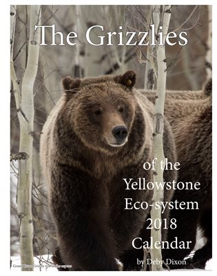 The Grizzlies of the Yellowstone Eco-System