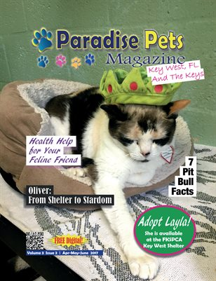 Paradise Pets Magazine, Key West, FL Vol. 3 Issue 2  Apr-May-June 2017