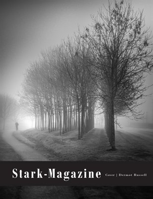 STARK-Magazine AWARDS Honorable Mention Issue