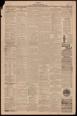 (PAGES 3-4 )  FEBRUARY 11, 1882 MAYFIELD MONITOR NEWSPAPER, MAYFIELD, GRAVES COUNTY, KENTUCKY