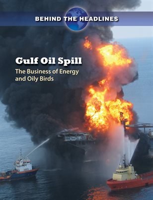 Gulf Oil Spill: The Business of Energy and Oily Birds