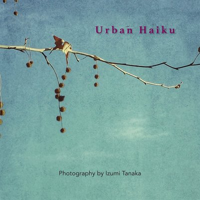 Urban Haiku