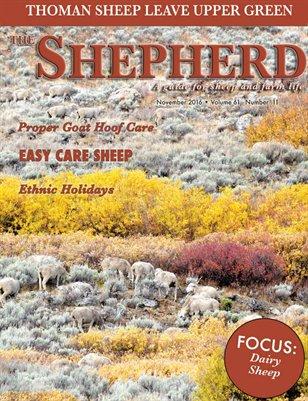 The Shepherd November 2016