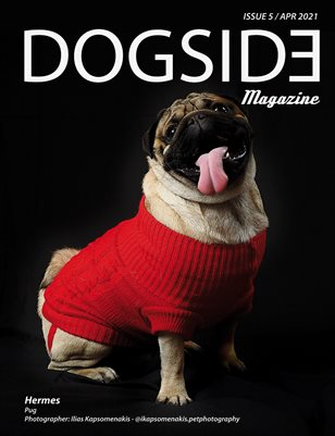 Dogside 5