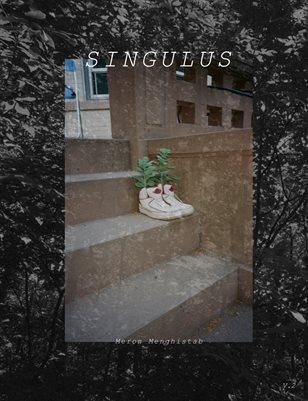 SINGULUS V.2