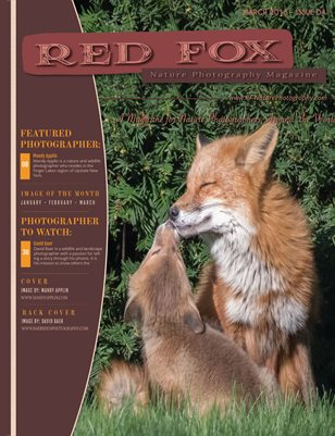 Issue 04: Spring 2019 - Red Fox Nature Photography Magzine