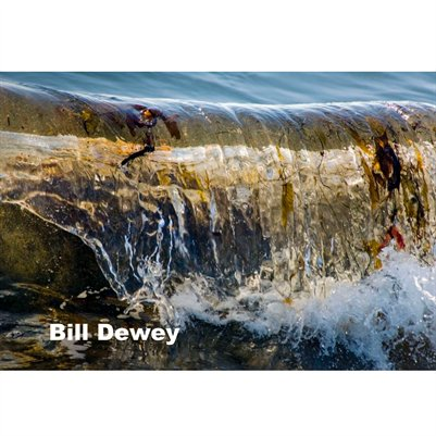 Bill Dewey booklet