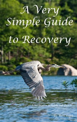 A Very Simple Guide to Recovery