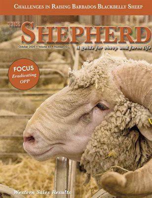 The Shepherd October 2020