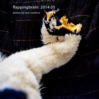 flappingbrain: 2014.05
