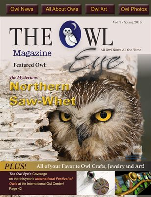 Owl Eye Magazine Issue 3 Spring 2016