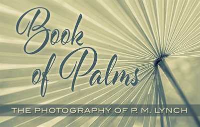 Book Of Palms digest