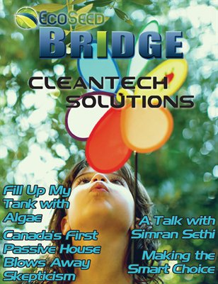Cleantech Solutions