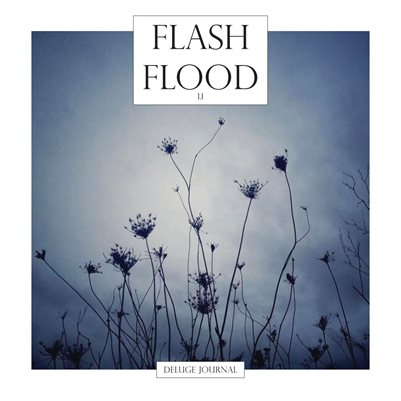 Flash Flood One-One