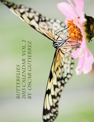 Butterflies 2013 Calendar Vol. 2