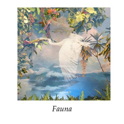 Fauna Exhibition