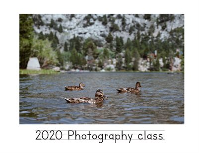 Photo 3 Collaborative 2020 Book