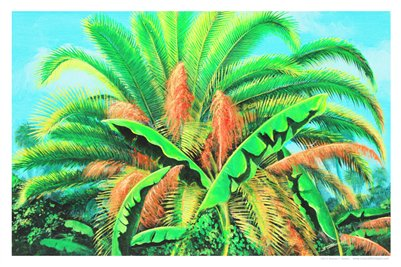 TROPICAL FLORIDA ART - PALMS GLORY 17