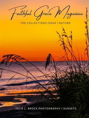 15. The Collections Issue | Nature