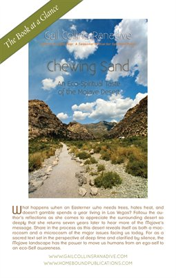 Chewing Sand | Book at a Glance