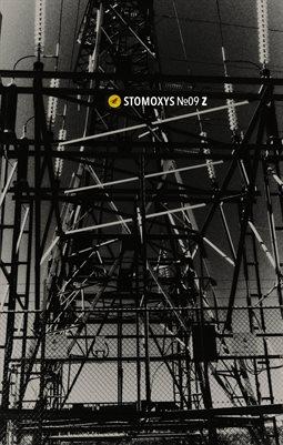 Stomoxys Nr.09 Z