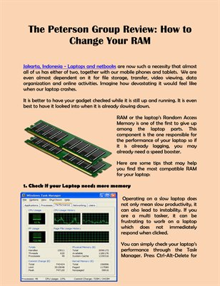 The Peterson Group Review: How to Change Your RAM