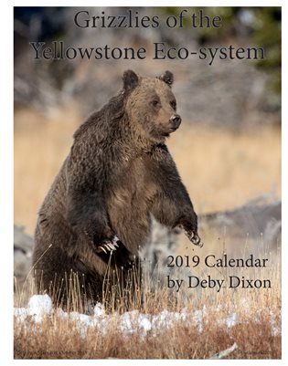 2019 Grizzlies of Yellowstone Eco-system Calendar