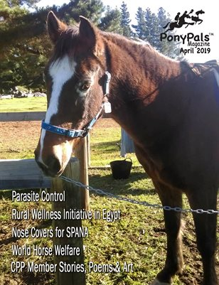 May 2019 Pony Pals Magazine - Vol. 8#12
