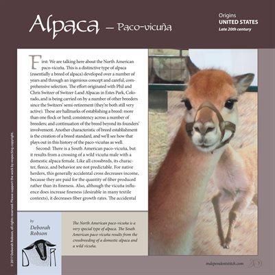 Deborah Robson's Guide to Fiber: Paco-vicuña Alpaca