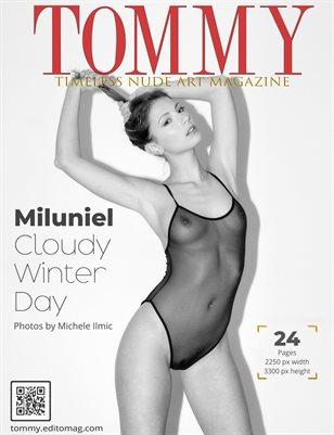 Miluniel - Cloudy Winter Day