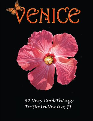 Your visit to Venice Florida