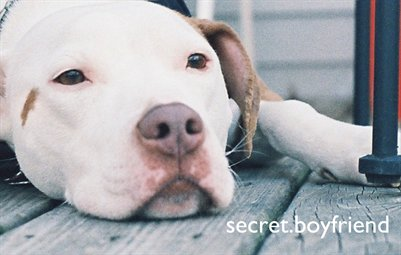 secret.boyfriend #1