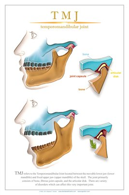 """TMJ"" - (white) Dental Wall Chart DWC212"
