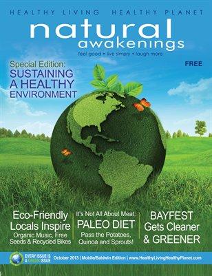 October 2013: Environment