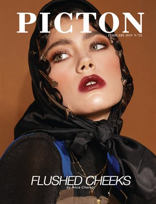 Picton Magazine FEBRUARY 2019 N32 Cover 2