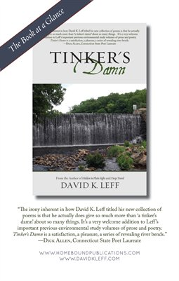 Tinker's Damn | Book at a Glance