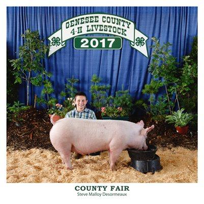4-H County Fair
