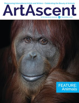 ArtAscent V46 Animals December 2020