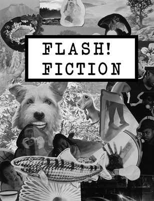 Flash Fiction 2020