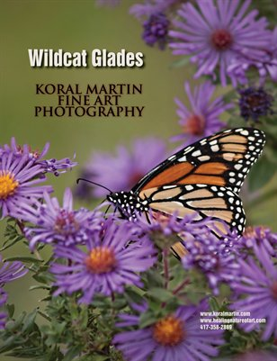 Wildcat Glades and Shoal Creek (Near Joplin Missouri)