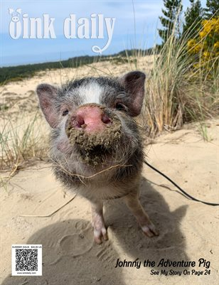 The Oink Daily - Summer 19
