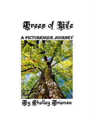 Trees of Life, A Picturesque Journey
