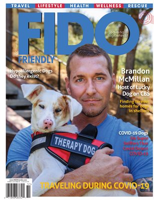 FIDO Friendly Summer Issue 81_SaleCopy