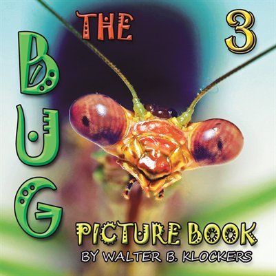 The Bug Picture Book 3