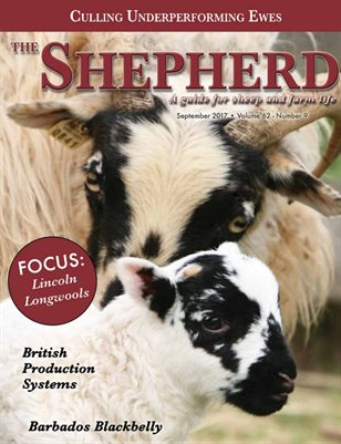 The Shepherd September 2017