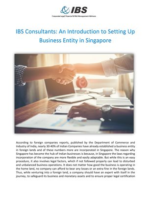 IBS Consultants: An Introduction to Setting Up Business Entity in Singapore