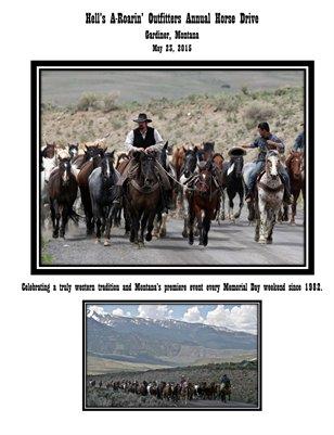 Horse Drive Program