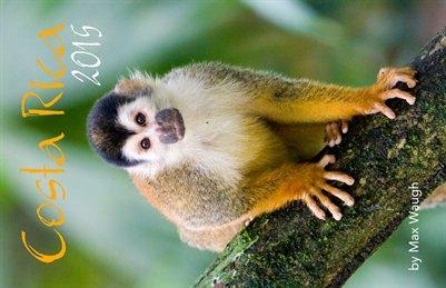 2015 Costa Rica Calendar