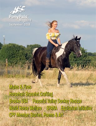 September 2018 Pony Pals Magazine - Vol.8#4