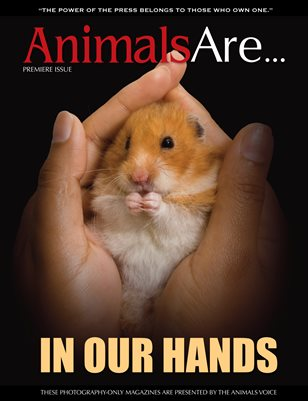 Animals Are... In Our Hands